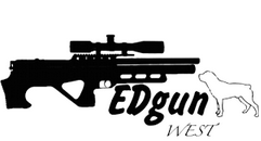 ремонт EDgun